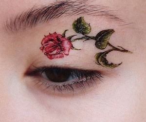 rose, aesthetic, and eye image