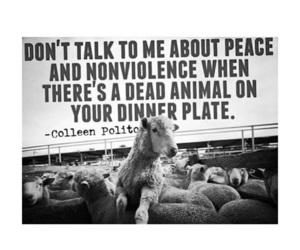 vegan, peace, and vegetarian image