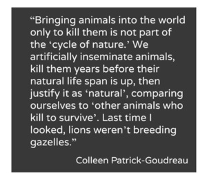 animals, peace, and quote image