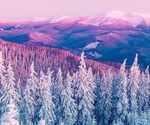 wallpaper, winter, and nature image