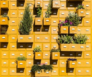 drawers, yellow, and street photography image