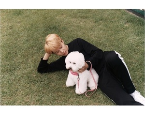 DNA, jimin, and dog image