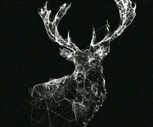 wallpaper, black, and deer image