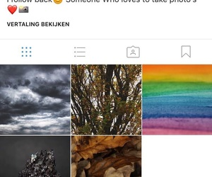 account, leaves, and instagram image