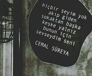 cemal süreya and türkçe sözler image