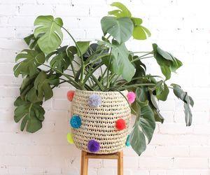 basket, home, and house image