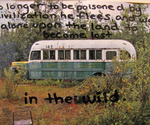 into the wild, quote, and wild image