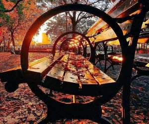 autumn, park, and fall image