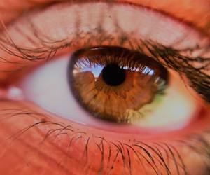 eye brown big beaty image