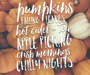 autumn, beautiful, and words image