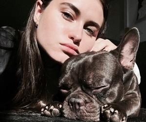 bulldog, indie, and girl image