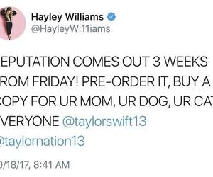 gorgeous, hayley williams, and Lyrics image