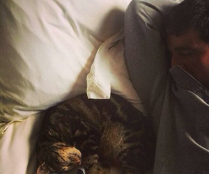 cat and noel gallagher image