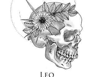 Leo, zodiac, and horoscope image