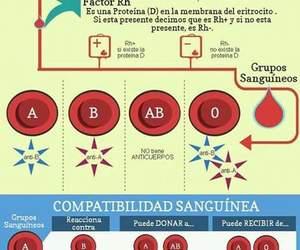 enfermeria and compatibilidad image