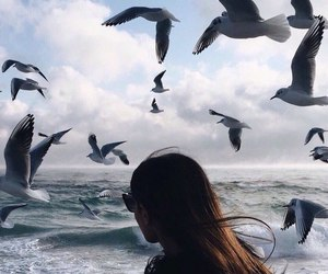 girl, sea, and bird image