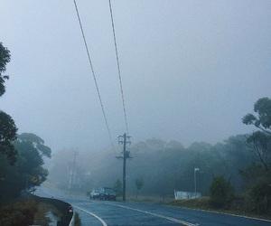 autumn, fall, and foggy image