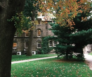 autumn, campus, and university image