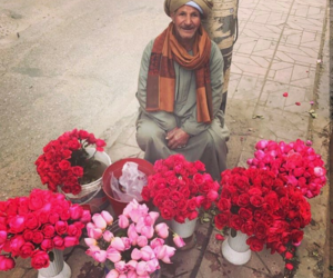flowers, old, and pink image