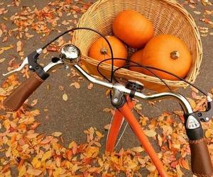 autumn, bike, and pumpkin image