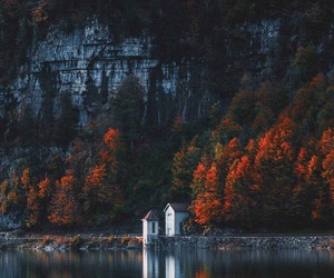 home, nature, and photography image