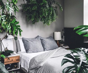 bedroom, decor, and plants image