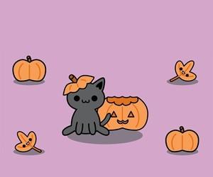 cat, Halloween, and pumpkin image