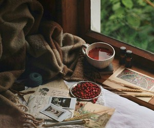 cozy, tea, and window image