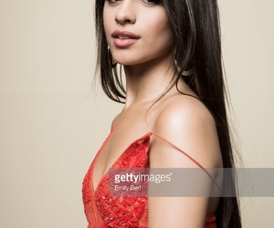 camila cabello, fifth harmony, and shawn mendes image