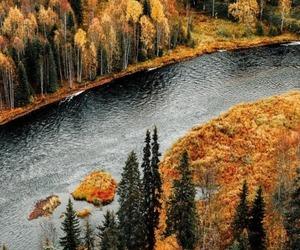 autumn, colourful, and landscape image