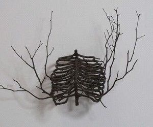 art, branches, and ribs image