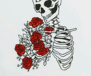 skeleton, grunge, and rose image