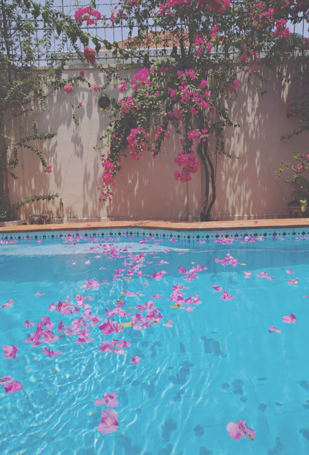 flowers, pink, and pool image