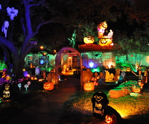 Halloween, decoration, and autumn image
