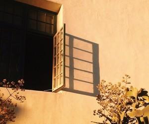 yellow, window, and aesthetic image