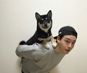 dog, ulzzang, and boy image