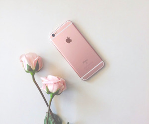 iphone and rose image