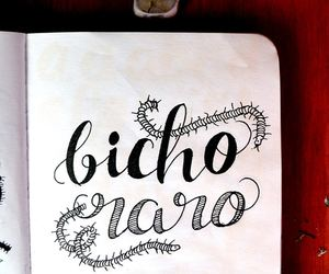 letras, lettering, and raro image