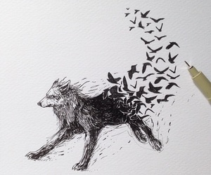 wolf, birds, and drawing image