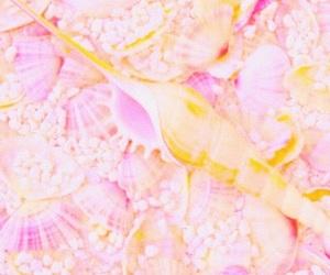 filter, pink, and orange image