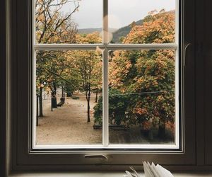 book, autumn, and read image