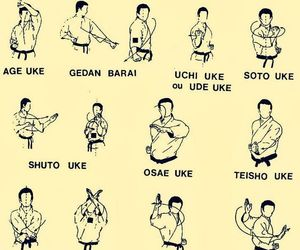 karate, martial arts, and training image