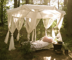 bed, forest, and nature image