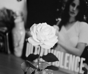 rose, ultraviolence, and lana del rey image