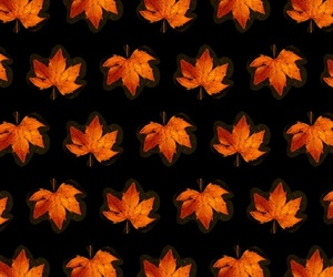 background, fall, and iphone image