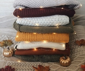 autumn, fall, and sweater image