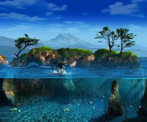 dolphin, sea, and beach image