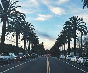 cars, cool, and palm image