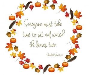 autumn, pumpkin, and acorn image