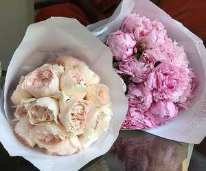 bouquet, pink, and chic image